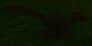 Adultvelociraptortextured