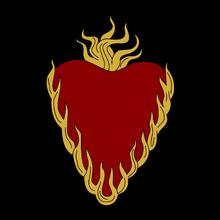 IMG 1744