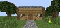 Steves house
