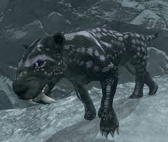 Vahl Sabre Cat