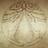 Vekerur's avatar