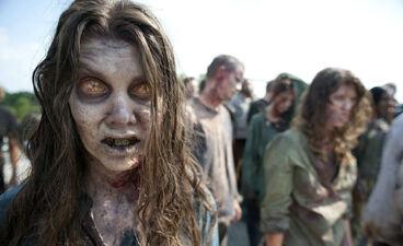 Frank Darabont and 'The Walking Dead', A Shameful Situation
