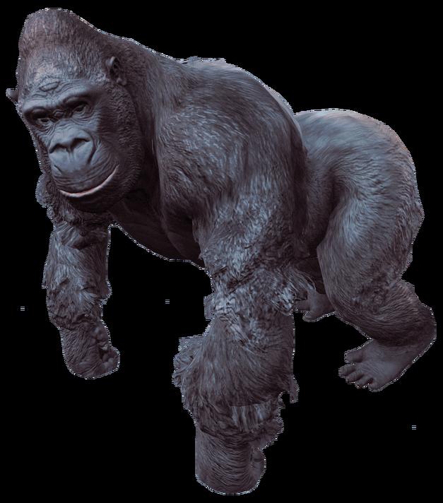 Fallout-4-Gorilla