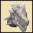 Raltin avarr's avatar