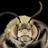 Tyseria2's avatar