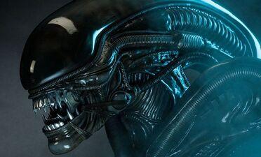 'Hateful Eight' Member Joins 'Alien: Covenant'