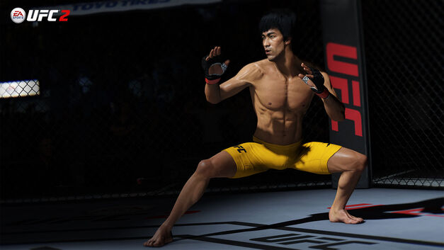 UFC-2-Lee-olympic-video-game