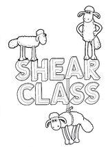 Shear Class