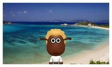 Shaun in Okinawa