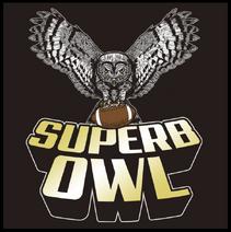 SuperbOwl1-20-2015-2