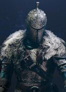 New Order of Knights (NOK)