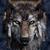 Wolf nya of House Stark