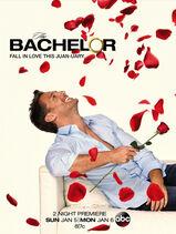 The Bachelor - Juan Pablo Galavis