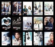 Grey's Anatomy season 1-15 poster