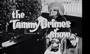 The Tammy Grimes Show
