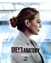 Grey's Anatomy season 17 poster