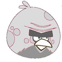 Tornato bird