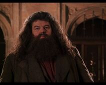 Hagrid returns