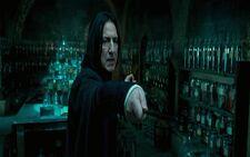 Snape teaching Occulemency