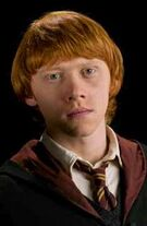 1Ron-Harry-Potter-and-the-half-blood-prince-potterhead-29292270-299-400