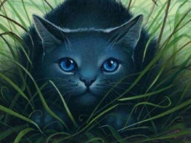 File:Bluestar-warrior-cats-of-pantherclan-28228378-1024-768.jpg