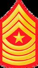 E9b USMC SM