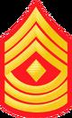 E8b USMC 1STSGT