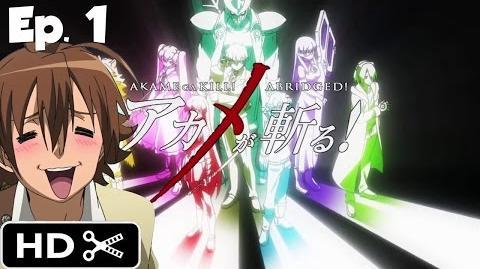 Akame ga Kill! Abridged! Episode 1 English Dub Parody - LIVE REACTION (60fps)