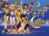Sailor Moon Abridged (Megami33)