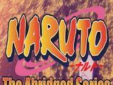 Naruto The Abridged Series (MasakoX & Vegeta3986)
