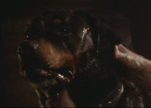 Spike (Alien 3)