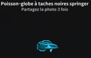 Poisson-globe à taches noires springer-0