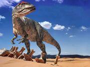 Allosaurusd