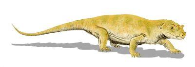 Tetraceratops