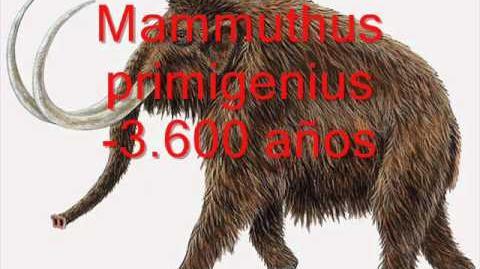 Toda la megafauna (animales gigantes de la era glacial)