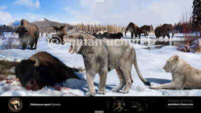 Pleistocene epoch Eurasia