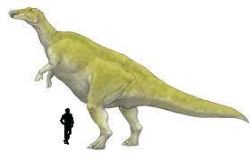 Huaxiaosaurus1