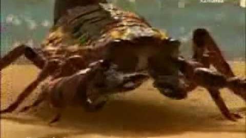 La vida antes de los dinosaurios 2 8