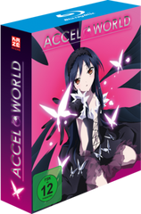 KA Accel-World BD-Vol.-1 Limited-Edition 3D-Cover 72DPI