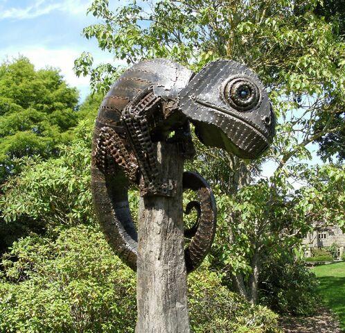 File:Rodney the chameleon.jpg