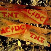ACDC-TNT