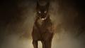 Hound of the Baskervilles.png