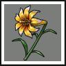 Nine-Tails Flower