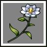 Nahmanda Flower.png