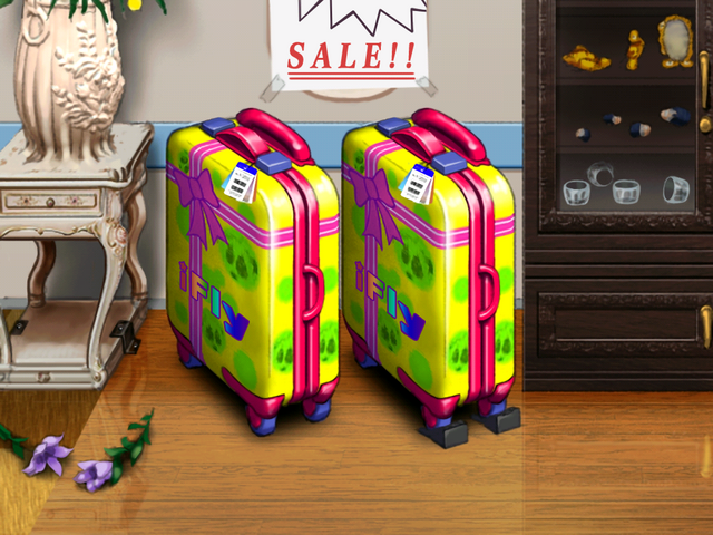 File:SuitcaseCloseup.png
