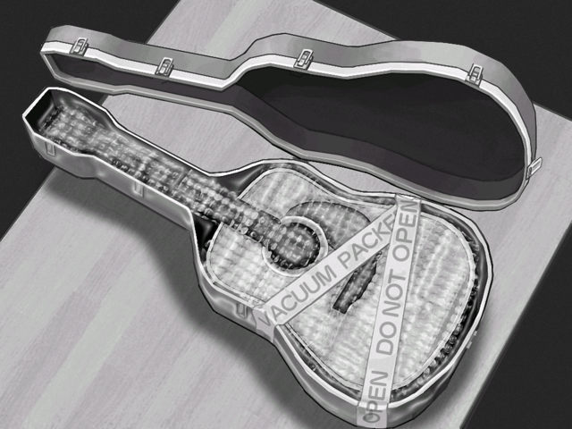 File:Packed Guitar.png