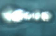 Burst Missile Impact