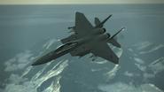 Shamrock Flyby 2