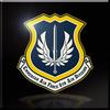 8th Air Division Infinity Emblem
