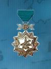 AC3D Medal 17 Bronze Ace